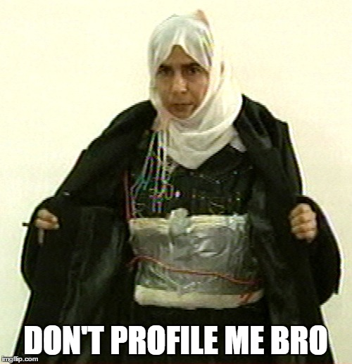 Isis Pinup | DON'T PROFILE ME BRO | image tagged in isis pinup | made w/ Imgflip meme maker