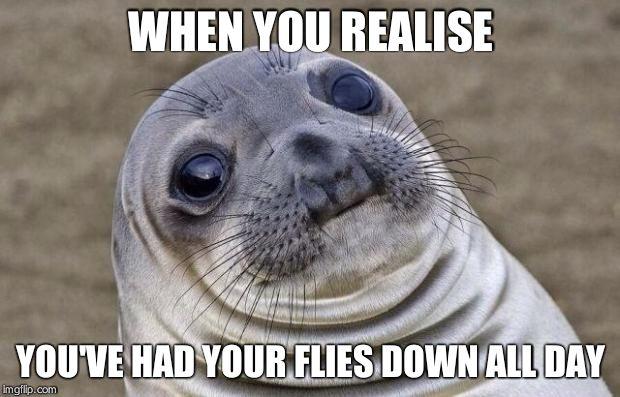 vnrcr awkward moment sealion meme imgflip,Fly Down Meme