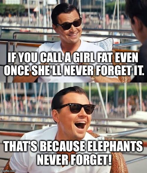 Leonardo Dicaprio Wolf Of Wall Street Meme | IF YOU CALL A GIRL FAT EVEN ONCE SHE'LL NEVER FORGET IT. THAT'S BECAUSE ELEPHANTS NEVER FORGET! | image tagged in memes,leonardo dicaprio wolf of wall street | made w/ Imgflip meme maker