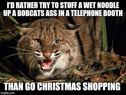 Bobcat | I'D RATHER TRY TO STUFF A WET NOODLE UP A BOBCATS ASS IN A TELEPHONE BOOTH THAN GO CHRISTMAS SHOPPING | image tagged in bobcat | made w/ Imgflip meme maker