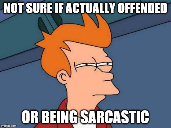NOT SURE IF ACTUALLY OFFENDED OR BEING SARCASTIC | image tagged in memes,futurama fry | made w/ Imgflip meme maker