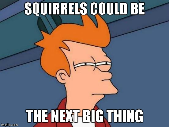 Futurama Fry Meme | SQUIRRELS COULD BE THE NEXT BIG THING | image tagged in memes,futurama fry | made w/ Imgflip meme maker