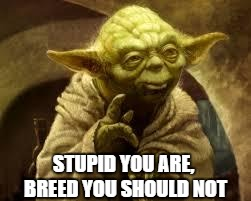 STUPID YOU ARE, BREED YOU SHOULD NOT | made w/ Imgflip meme maker