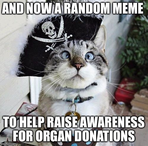 Spangles | AND NOW A RANDOM MEME TO HELP RAISE AWARENESS FOR ORGAN DONATIONS | image tagged in memes,spangles | made w/ Imgflip meme maker