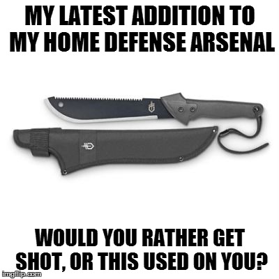 Gerber Machete Jr. | MY LATEST ADDITION TO MY HOME DEFENSE ARSENAL WOULD YOU RATHER GET SHOT, OR THIS USED ON YOU? | image tagged in gerber machete jr | made w/ Imgflip meme maker