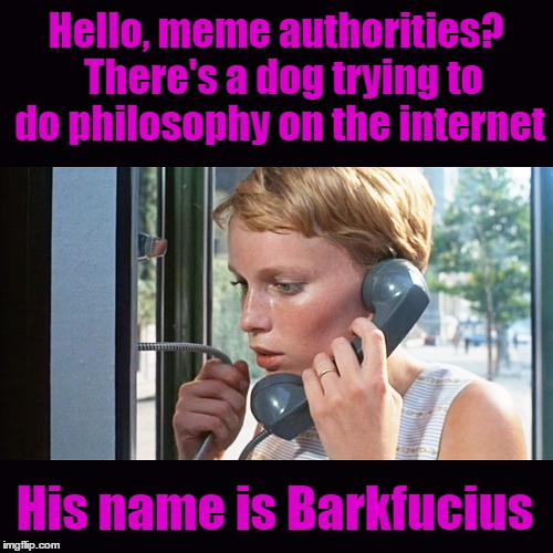 If you see something... say something :) | Hello, meme authorities?  There's a dog trying to do philosophy on the internet His name is Barkfucius | image tagged in memes,imgflip,dog,philosopher,barkfucious,meme police | made w/ Imgflip meme maker