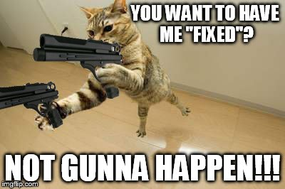 "Not now not ever!  | YOU WANT TO HAVE ME ""FIXED""? NOT GUNNA HAPPEN!!! 