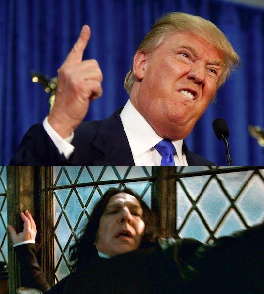 Donald Snape Meme Generator - Imgflip