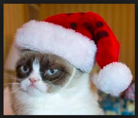 Grumpy Cat Christmas Meme Images