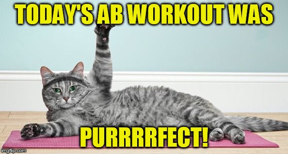 Exercise cat | TODAY'S AB WORKOUT WAS PURRRRFECT! | image tagged in exercise cat | made w/ Imgflip meme maker