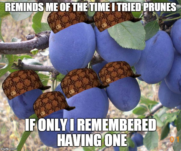 Can't Think Prunes | REMINDS ME OF THE TIME I TRIED PRUNES IF ONLY I REMEMBERED HAVING ONE | image tagged in prunes,think,forget | made w/ Imgflip meme maker