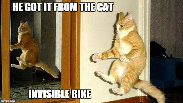 HE GOT IT FROM THE CAT INVISIBLE BIKE | made w/ Imgflip meme maker