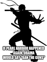 "IF PEARL HARBOR HAPPENED AGAIN, OBAMA WOULD SAY ""BAN THE GUNS"" 