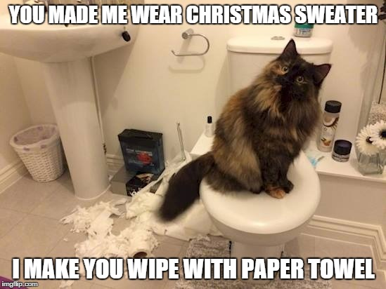 scrooge cat | YOU MADE ME WEAR CHRISTMAS SWEATER I MAKE YOU WIPE WITH PAPER TOWEL | image tagged in pissed off cat,toilet paper | made w/ Imgflip meme maker