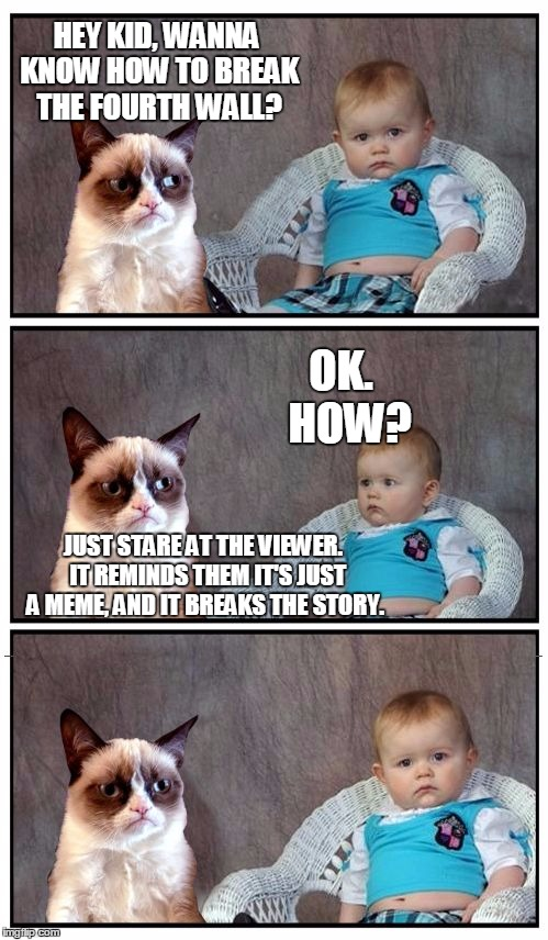 Dad Joke Cat | HEY KID, WANNA KNOW HOW TO BREAK THE FOURTH WALL? JUST STARE AT THE VIEWER.  IT REMINDS THEM IT'S JUST A MEME, AND IT BREAKS THE STORY. OK.  | image tagged in dad joke cat | made w/ Imgflip meme maker