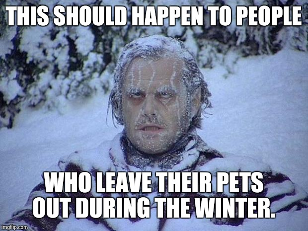 Jack Nicholson The Shining Snow Meme | THIS SHOULD HAPPEN TO PEOPLE WHO LEAVE THEIR PETS OUT DURING THE WINTER. | image tagged in memes,jack nicholson the shining snow | made w/ Imgflip meme maker