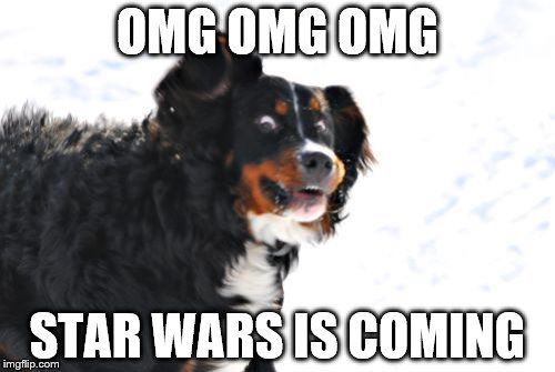Crazy Dawg | OMG OMG OMG STAR WARS IS COMING | image tagged in memes,crazy dawg | made w/ Imgflip meme maker