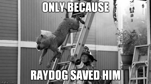 ONLY BECAUSE RAYDOG SAVED HIM | made w/ Imgflip meme maker