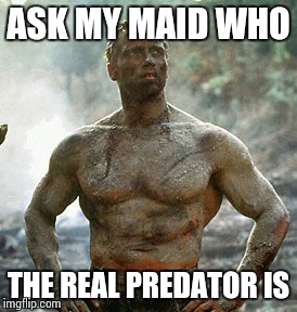 Predator | ASK MY MAID WHO THE REAL PREDATOR IS | image tagged in memes,predator | made w/ Imgflip meme maker