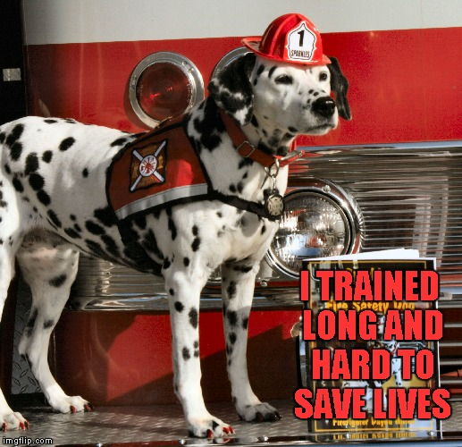 I TRAINED LONG AND HARD TO SAVE LIVES | made w/ Imgflip meme maker