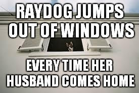 RAYDOG JUMPS OUT OF WINDOWS EVERY TIME HER HUSBAND COMES HOME | made w/ Imgflip meme maker