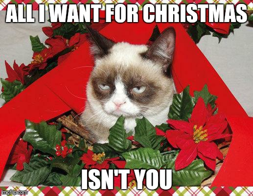 Grumpy Cat Mistletoe | ALL I WANT FOR CHRISTMAS ISN'T YOU | image tagged in memes,grumpy cat mistletoe,grumpy cat | made w/ Imgflip meme maker