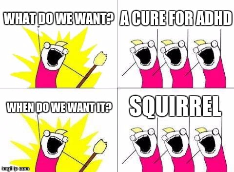 What Do We Want Meme | WHAT DO WE WANT? A CURE FOR ADHD WHEN DO WE WANT IT? SQUIRREL | image tagged in memes,what do we want | made w/ Imgflip meme maker