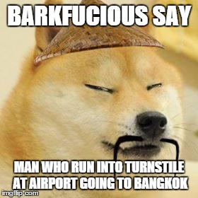Barkfucious The Wise | BARKFUCIOUS SAY MAN WHO RUN INTO TURNSTILE AT AIRPORT GOING TO BANGKOK | image tagged in asian doge,barkfucious,asian,philosophical dog | made w/ Imgflip meme maker