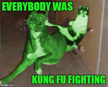 Those cats were fast as lightning... | EVERYBODY WAS KUNG FU FIGHTING | image tagged in raycat kicking raydog,memes,kung fu | made w/ Imgflip meme maker