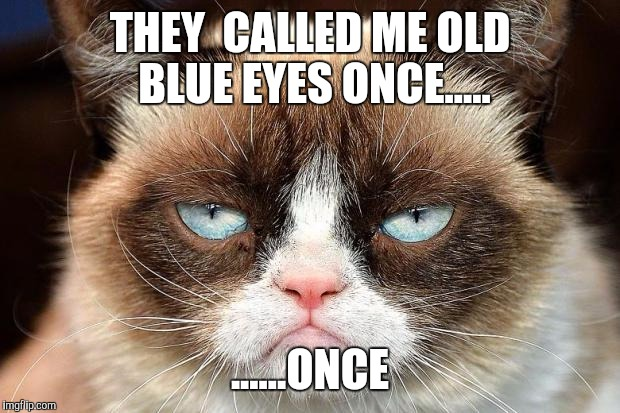 Grumpy Cat Not Amused Meme - Imgflip