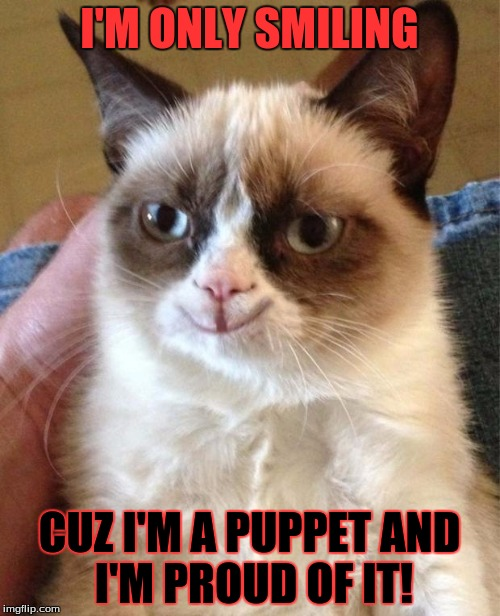 Grumpy Cat Happy | I'M ONLY SMILING CUZ I'M A PUPPET AND I'M PROUD OF IT! | image tagged in happy grumpy cat | made w/ Imgflip meme maker