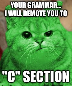 "RayCat Annoyed | YOUR GRAMMAR... I WILL DEMOTE YOU TO ""C"" SECTION 