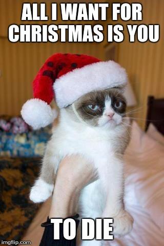 All I Want For Christmas Meme.Grumpy Cat Christmas Meme Imgflip