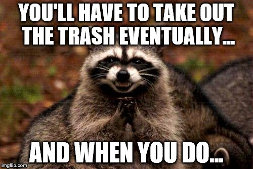 Taking out the trash.. | YOU'LL HAVE TO TAKE OUT THE TRASH EVENTUALLY... AND WHEN YOU DO... | image tagged in memes,evil plotting raccoon | made w/ Imgflip meme maker