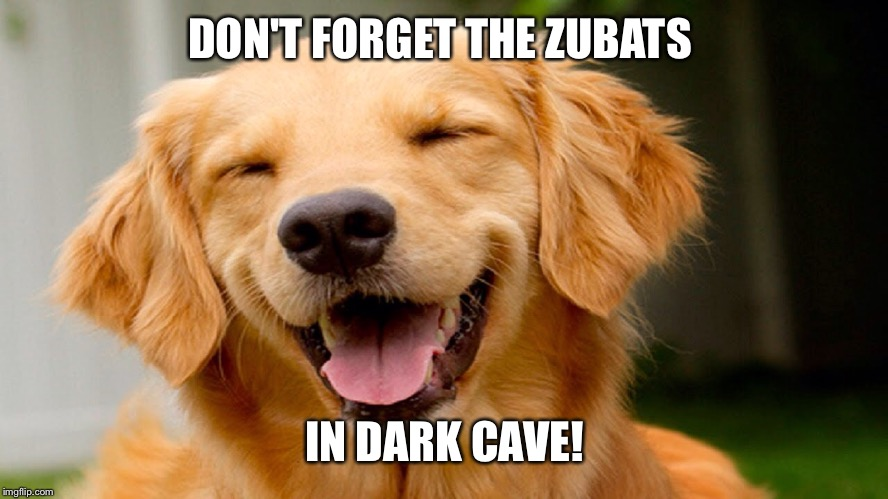 Laughing Dog | DON'T FORGET THE ZUBATS IN DARK CAVE! | image tagged in laughing dog | made w/ Imgflip meme maker