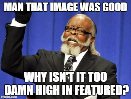 Too Damn High Meme | MAN THAT IMAGE WAS GOOD WHY ISN'T IT TOO DAMN HIGH IN FEATURED? | image tagged in memes,too damn high | made w/ Imgflip meme maker