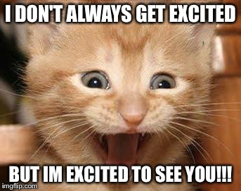 Excited to see you memes excited cat meme imgflip