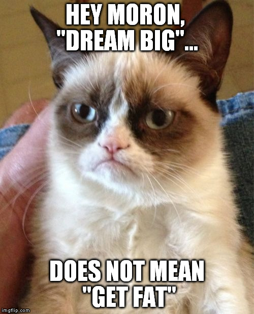 "Grumpy Cat Meme | HEY MORON,  ""DREAM BIG""... DOES NOT MEAN ""GET FAT"" 