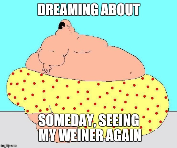 DREAMING ABOUT SOMEDAY, SEEING MY WEINER AGAIN | made w/ Imgflip meme maker