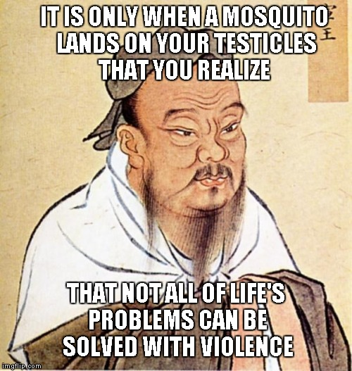 I can't think of too many men that would disagree with this one. | IT IS ONLY WHEN A MOSQUITO LANDS ON YOUR TESTICLES THAT YOU REALIZE THAT NOT ALL OF LIFE'S PROBLEMS CAN BE SOLVED WITH VIOLENCE | image tagged in confucious say,confucius,funny quotes,quotes,funny | made w/ Imgflip meme maker