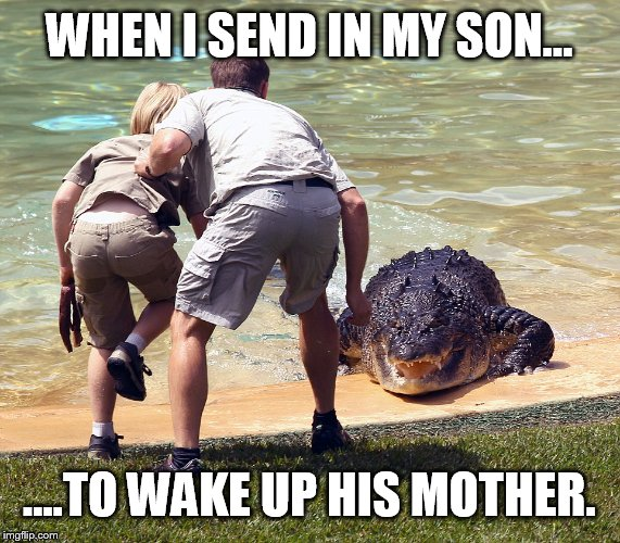 My wife is not a morning person  | WHEN I SEND IN MY SON... ....TO WAKE UP HIS MOTHER. | image tagged in memes,funny,crocodile,bad morning | made w/ Imgflip meme maker