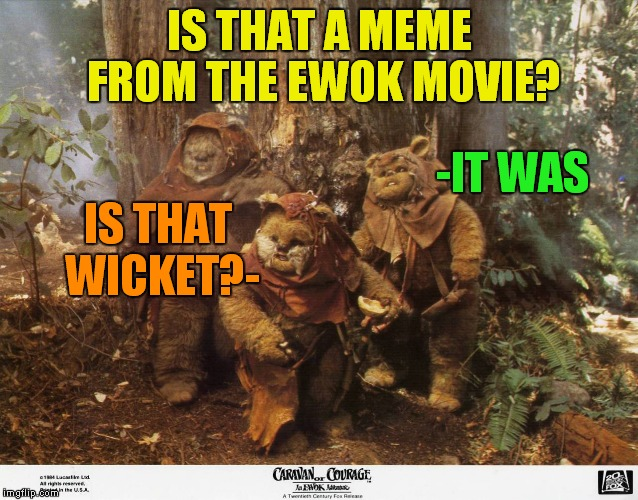 IS THAT A MEME FROM THE EWOK MOVIE? -IT WAS IS THAT WICKET?- | made w/ Imgflip meme maker