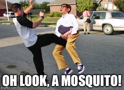 OH LOOK, A MOSQUITO! | made w/ Imgflip meme maker