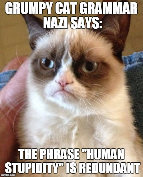 "Grumpy Cat Meme | GRUMPY CAT GRAMMAR NAZI SAYS: THE PHRASE ""HUMAN STUPIDITY"" IS REDUNDANT 