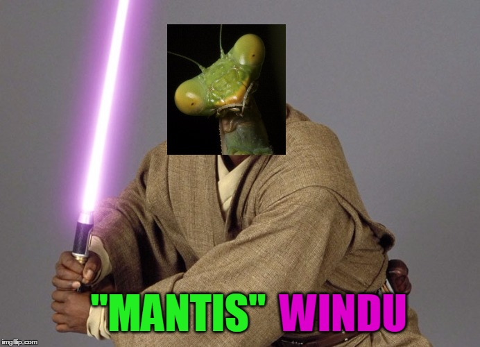 """MANTIS"" WINDU 