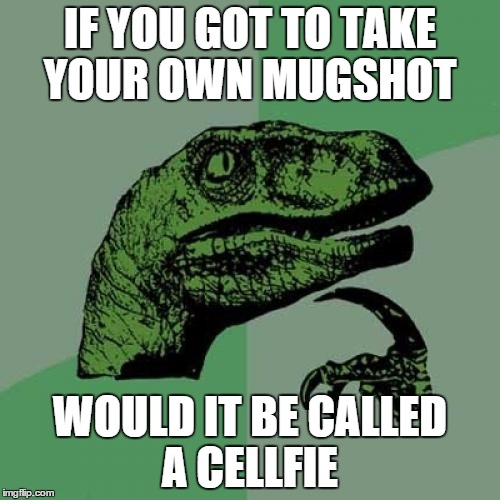 Philosoraptor Meme | IF YOU GOT TO TAKE YOUR OWN MUGSHOT WOULD IT BE CALLED A CELLFIE | image tagged in memes,philosoraptor | made w/ Imgflip meme maker