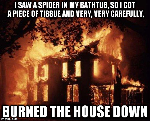 Burning House | I SAW A SPIDER IN MY BATHTUB, SO I GOT A PIECE OF TISSUE AND VERY, VERY CAREFULLY, BURNED THE HOUSE DOWN | image tagged in burning house,memes,funny | made w/ Imgflip meme maker