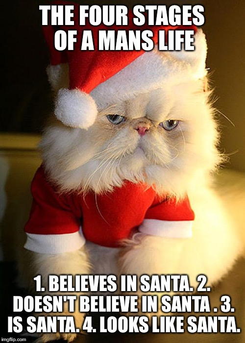 Santa Grumpy Cat | THE FOUR STAGES OF A MANS LIFE 1. BELIEVES IN SANTA. 2. DOESN'T BELIEVE IN SANTA . 3. IS SANTA. 4. LOOKS LIKE SANTA. | image tagged in santa grumpy cat | made w/ Imgflip meme maker