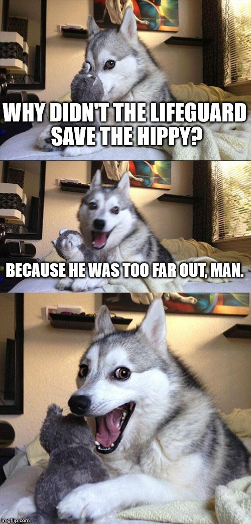Bad pun dog lifeguard and hippy | WHY DIDN'T THE LIFEGUARD SAVE THE HIPPY? BECAUSE HE WAS TOO FAR OUT, MAN. | image tagged in memes,bad pun dog | made w/ Imgflip meme maker