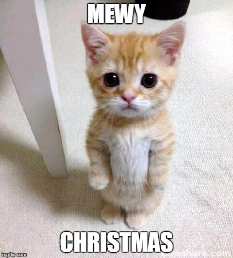 Christmas Memes Cats.And A Happy Mew Year Imgflip